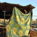mount Sinjar shelter